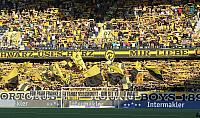 BSC Young Boys - FC Zürich 24.08.2019