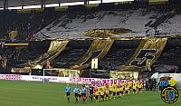 BSC Young Boys - FC Sion 17.03.2013