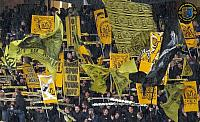 BSC Young Boys - FC St. Gallen 12.05.2016